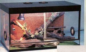 стеклянный террариум горизонтального типа